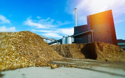 UK Government urged to utilise anaerobic digestion opportunities to help climate