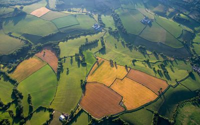 Conservative Environment Network launches the new Manifesto for their vision for a greener UK