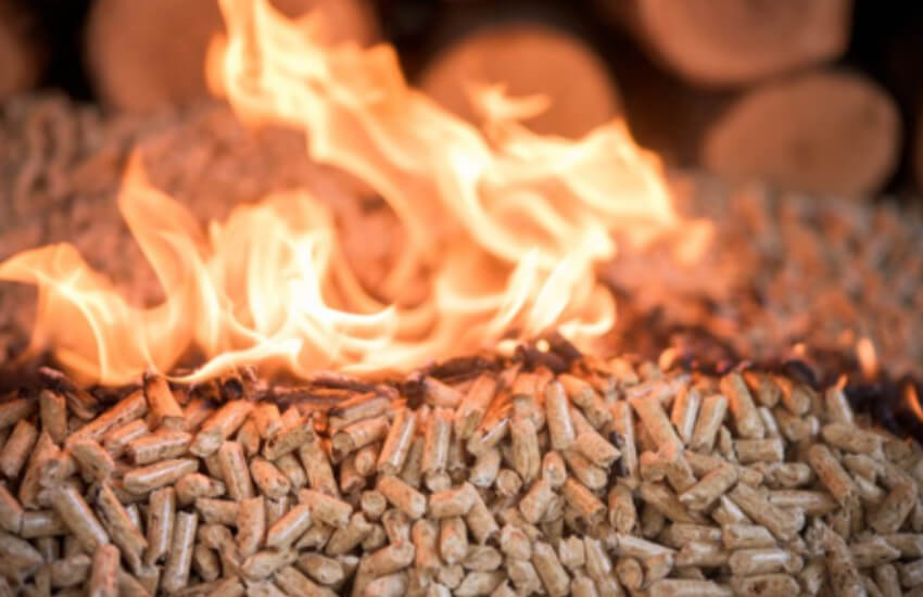 Biomass campaign group calls on UK Government to extend RHI scheme