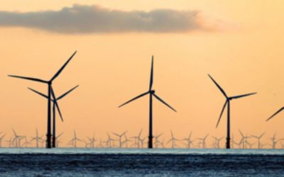 The Conservatives have proved that the economy can benefit from going green