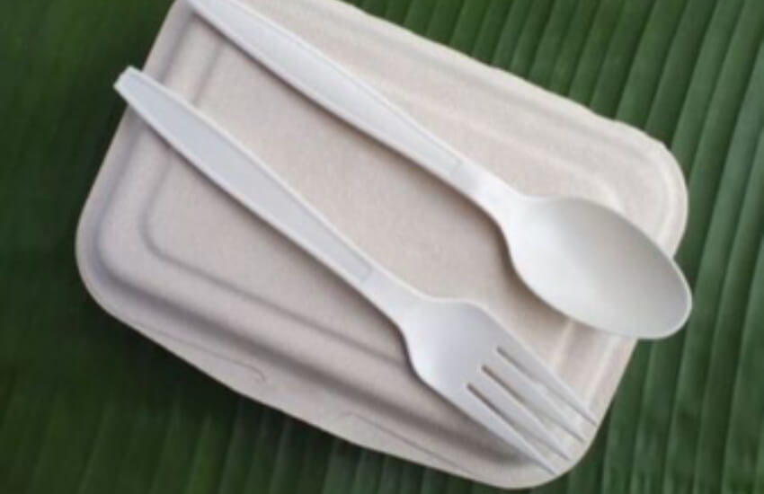 UK should stop plans to ramp up use of industrially compostable packaging MPs warn