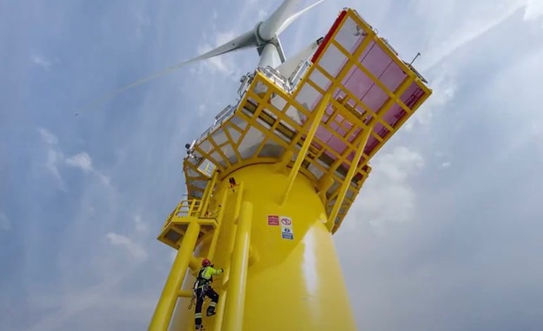 UK launches offshore wind partnership to protect and restore marine environment