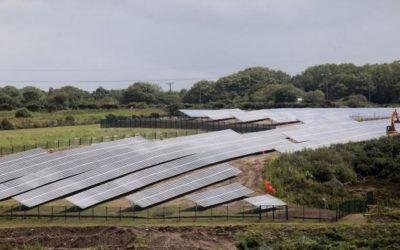 Public opinion and hungry investors push more farmers to convert land as number of solar farms swells to 2,500